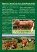regler og betingelser - Dansk Limousine Forening - Page 7