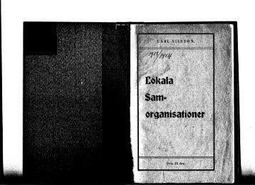 Carl Nilssons broschyr om LS.pdf