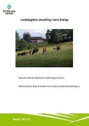 Landsbygdens utveckling i norra Sverige, en rapport från ... - ATL