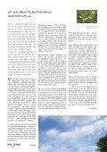 Lösnummer 45 Kr Värdig kultur! - Igenom - Page 3