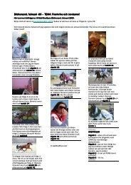 detta tre-sidiga dokument i pdf - Stall Bredbyn