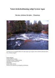 Naturvärdesbedömning enligt System Aqua - Melica