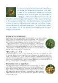 Hotade arter trivs i ledningsgatorna - Vattenfall - Page 2