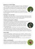 Hotade arter trivs i ledningsgatorna - Vattenfall - Page 3