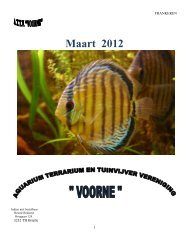 Maandblad Maart 2012 - Aquariumvereniging Voorne