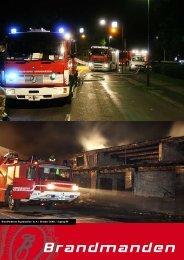 Artikel fra Brandmanden oktober 2008 - Brandfolkenes Organisation