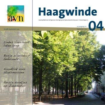 Haagwinde 4 - AVN