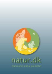 1 Danmarks natur på nettet - Natur.dk