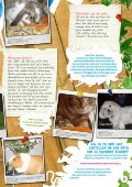 hier online - Kids For Animals - Page 3