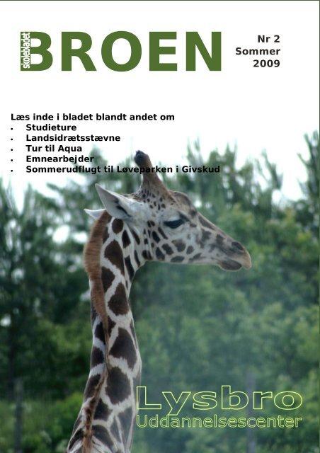 Skolebladet BROEN, sommer 2009 - Lysbro Uddannelsescenter