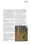 Sett hjort - Sogn og Fjordane Skogeigarlag - Page 7