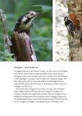 Broschyr: Vitryggig hackspett - Naturskyddsföreningen - Page 2