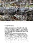 Broschyr: Vitryggig hackspett - Naturskyddsföreningen - Page 6