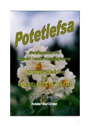 Til Potetlefsa 2010 - Fjellmandel fra Oppdal