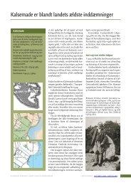 Kalsemade er blandt landets ældste inddæmninger - Det tabte land