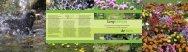 Lang leve(n)de tuin.pdf - Knooppunt Bouwen met Groen