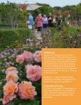 Program for Rosenkåring 2013 - Cafe Rosenhaven - Page 3