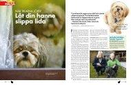 Kärlekskranka hanhundar (Härliga Hund) - Tilvemo