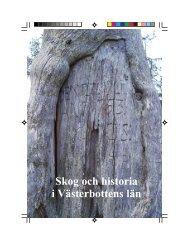 Skog och historia i Västerbottens län - Spår från 10 000 år