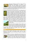 GREKLAND - Page 5