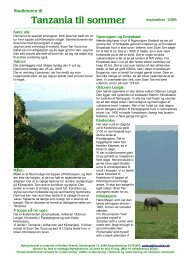 Download folder om Studieturen til Kilimanjaro i 2009 - Dansk ...