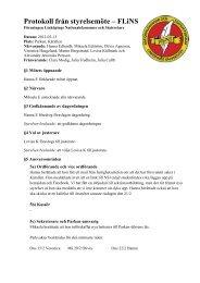 Protokoll från styrelsemöte – FLiNS