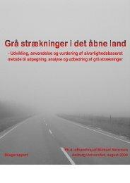 Ph.d.-afhandling af Michael Sørensen Aalborg Universitet, august ...
