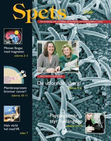 Spets 1-06.indd - Medicinsk fakultet - Umeå universitet