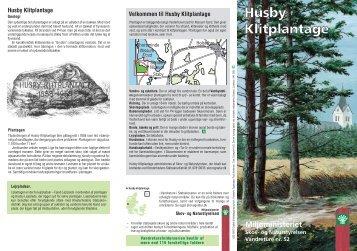 Husby Klitplantage - Kronhede Lejrskole
