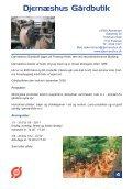Vestjyske Smagsoplevelser 2007 - VIFU - Page 7