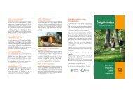 Linkoping broschyr