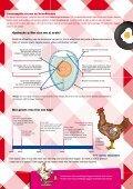 ALLES wat je nog niet wist over het ei - Blij met een Ei - Page 3