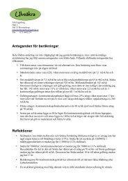 Nils Fagerbergs kommentarer till nuvärdeskalkylen. (PDF) - ATL