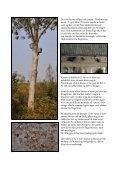 Læs rapporten her - Tarup-Davinde - Page 5