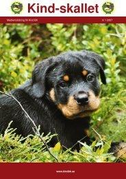 skallet 0701.p65 - Kind Brukshundklubb