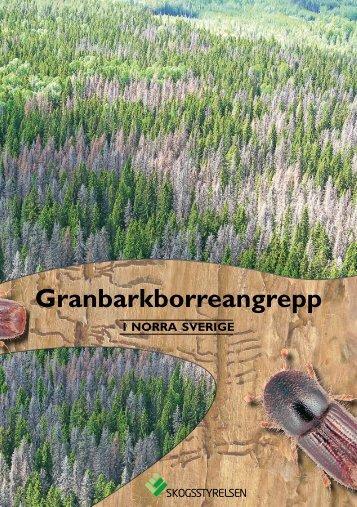 Broschyr om granbarkborreangrepp i norra Sverige - Skogsstyrelsen