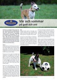 Vår och sommar - Sveland