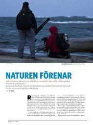 06 biofoto.pdf - Kamera & Bild