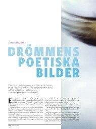 Mikael Bertmar drömmer ofta så och gör sedan b - Kamera & Bild