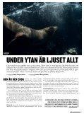 Havsleguaner - Kamera & Bild - Page 2