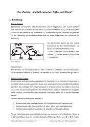 Der Zucker - Lernen durch Erleben - Projekt: Schulklassen auf dem ...