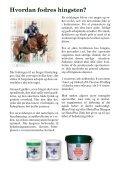 Hvordan fodres hingsten? - St. Hippolyt - Page 2