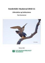 Årsrapport vandrefalk 2010-11.pdf - Norges Naturvernforbund