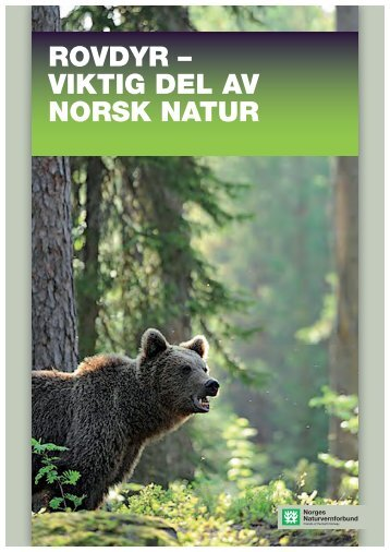 rovdyr – viktig del av norsk natur - Norges Naturvernforbund
