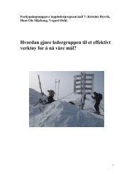 Hvordan gjøre ledergruppen til et effektivt ... - Helse Midt-Norge