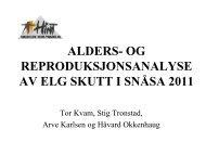 Snåsa (2011) - Prosjekt