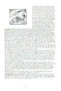 PATER-STELTENPOOL HEEFT NIETS MEER - Stichting Papua ... - Page 7