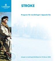 Stroke (2003) - Landstinget i Uppsala län
