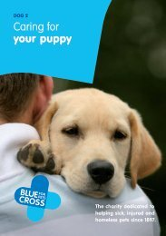 DOG 2 Caring For Your Puppy - Blue Cross