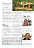 Nyhetsbrev nr 1, mars 2011 (pdf 0,7 MB, nytt fönster) - Page 7